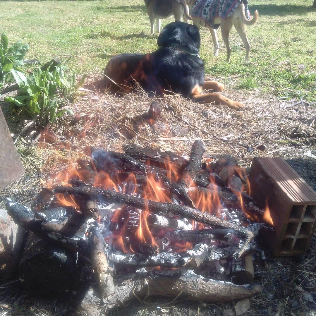 Poniendo el fuego para el vacío...falta