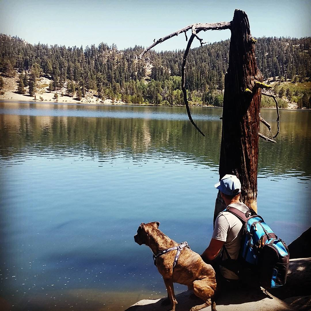 Early September #hike out to Marlette Lake with the pup! #laborday2016 #getoutside #xplorewild #backpacks #coolers #renotahoe #tahoesnaps #adventure #graniterocx #outdoorsrocx