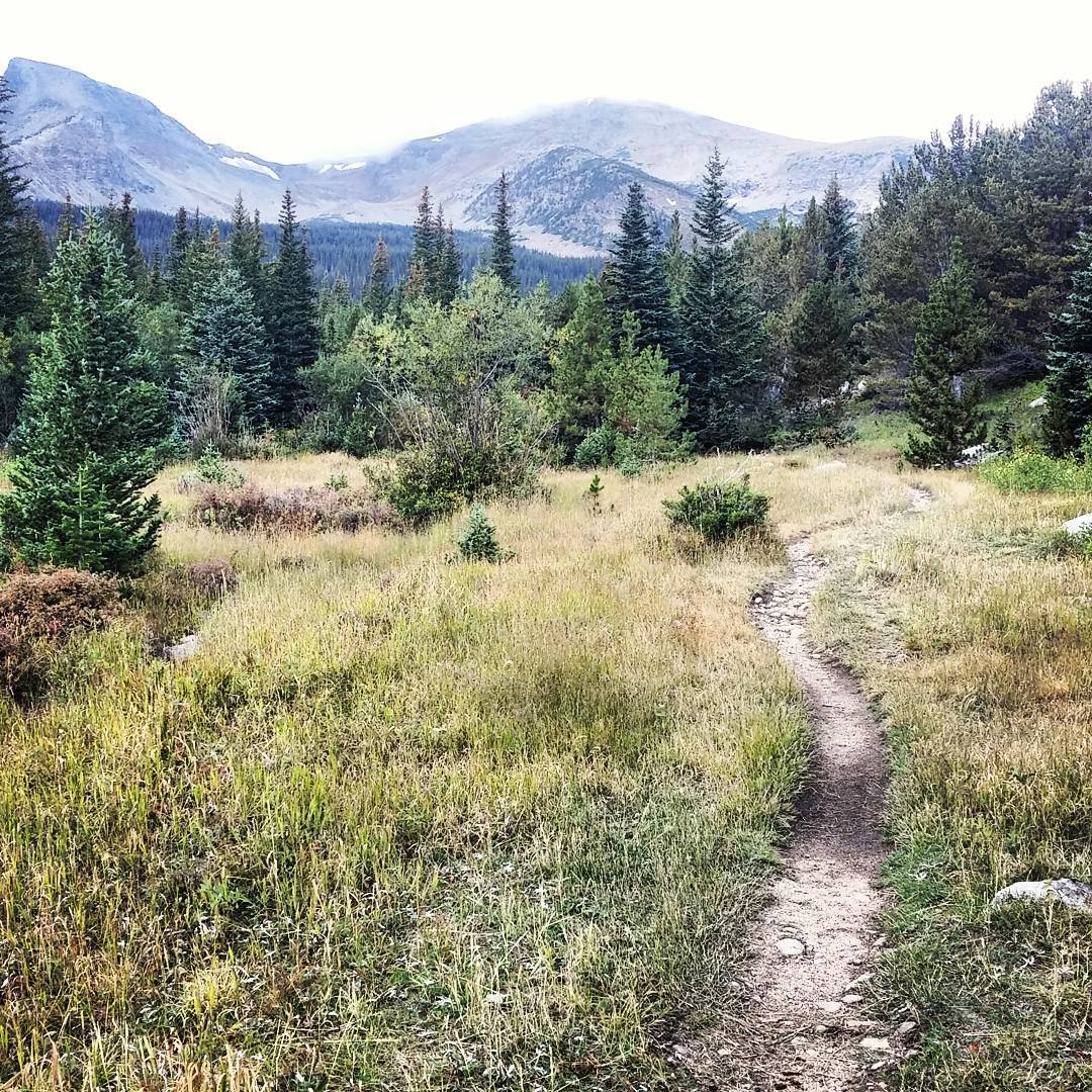 The #trail is calling! Where will it lead? Anyone have any favorites?