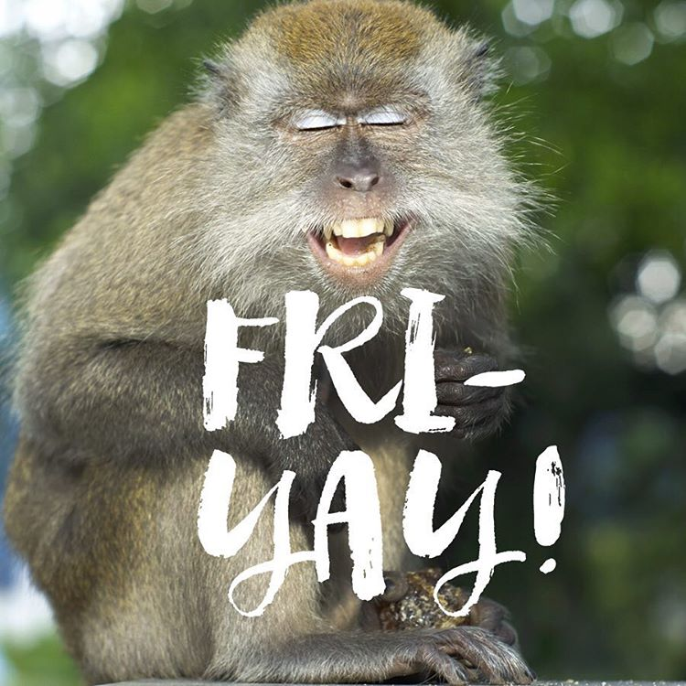 What you look like when a four day work week feels like six. #Cuipo #SaveRainforest #Friyay #WeekendReady #Yassss