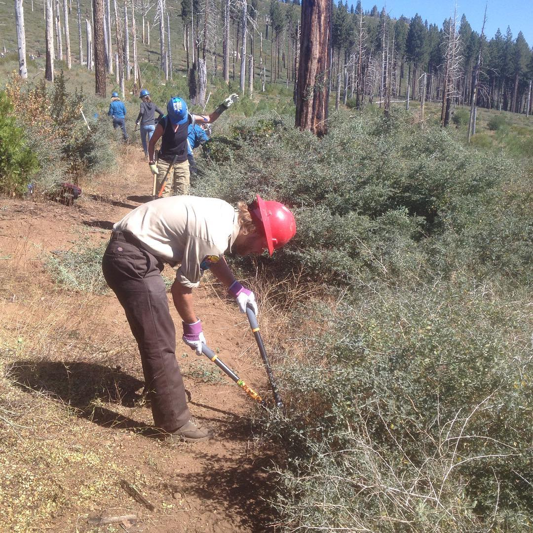 Tahoe Forest Stewardship Day is underway! We're out in the Angora Burn in partnership with the USFS, with help from the California Conservation Corps and dozens of awesome community members.