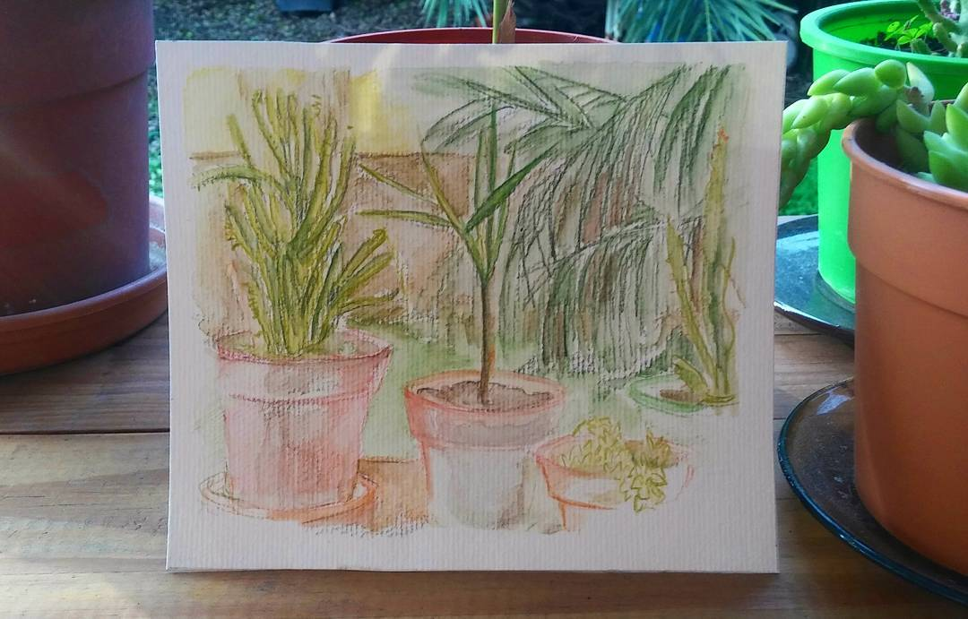Muy sábado. #art #arte #sketching #sketch #acuarela #aquarelle #watercolor #rincon #cactus #crasas #saturday