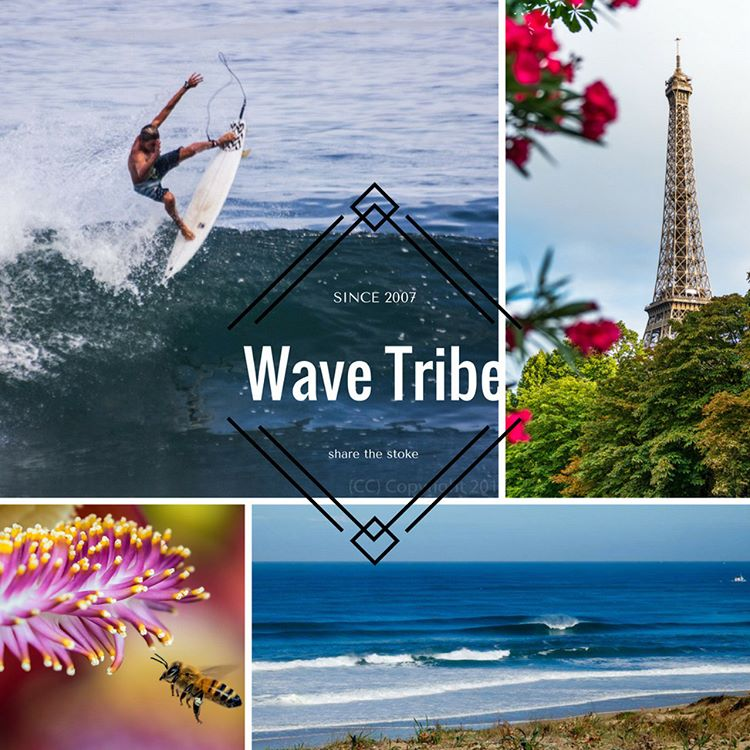New partners down under @freshtracksmargs - #surftrip Surf Guide updates for #france and #rio #brazil - Robert's 3DF #surfboad review @roberts_surfboards - #DIY #shaping #Alaia - @wavetribe September #deals - #eco Why we need to protect #beees -...