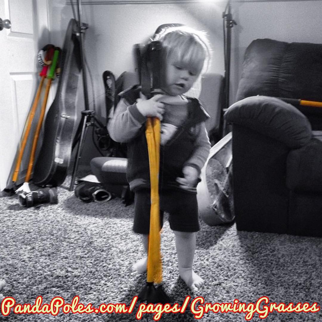 We know as a parent it can be hard to justify spending $40 on a (chintzy) new pair of aluminum ski poles for your kids, let alone $89 on a pair of Panda Poles. Which is why we have created the 'Growing Grasses' program!  Now, not only do parents save...