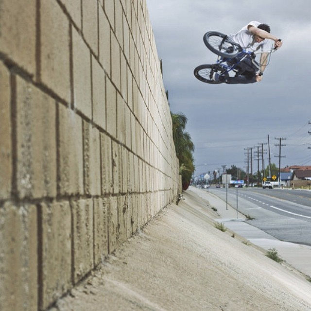 Off the wall. @bmx @colinmackaybmx #bike
