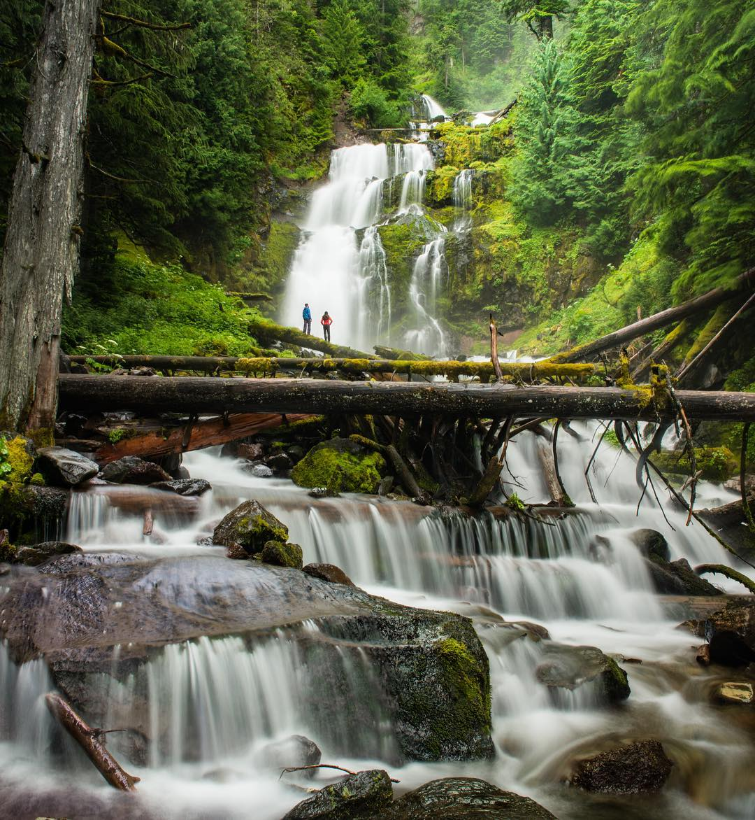 I think there's a waterfall-lover in all of us