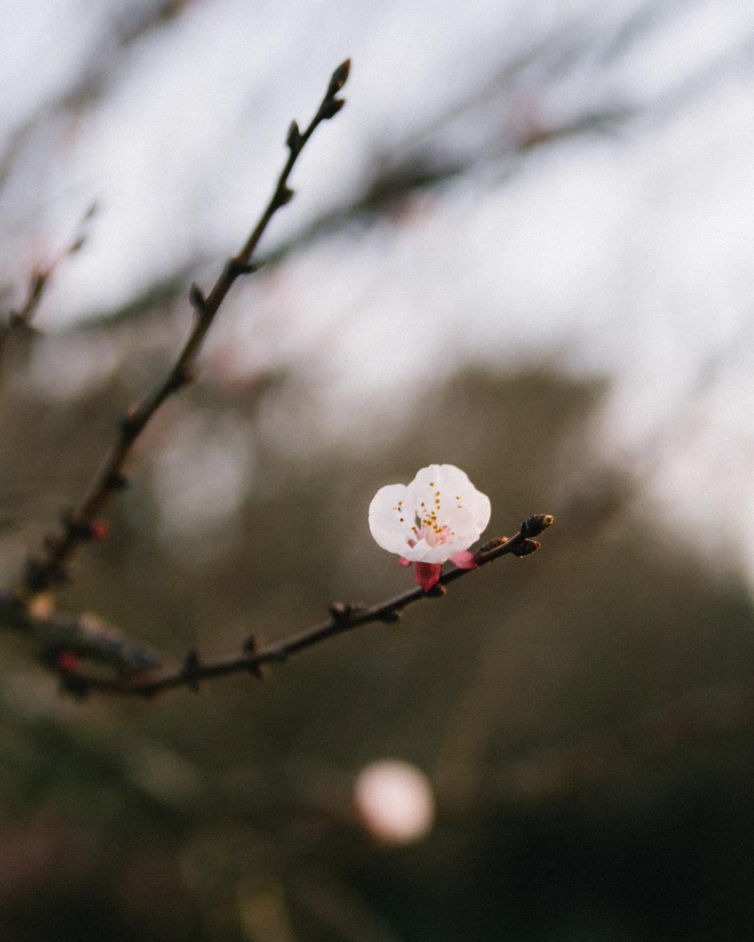 La primavera asoma :) www.tinchoandlola.com