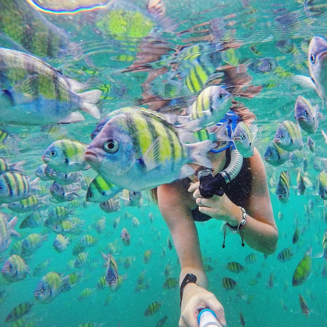 @tuunde snorkeling at the Phi Phi Islands in Thailand.