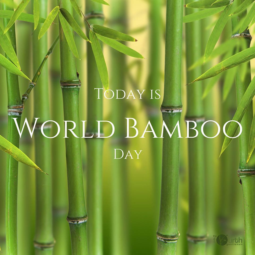 Celebrate National Bamboo Day with TFG!! To receive 10% off your first purchase use promo code TFGbamboo and TFG will plant 2 trees with every purchase!