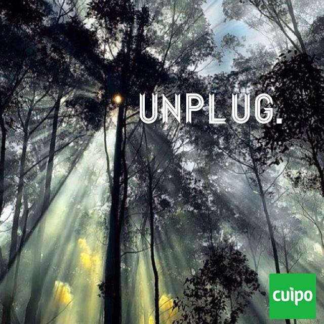 #unplug #cuipo #saverainforest