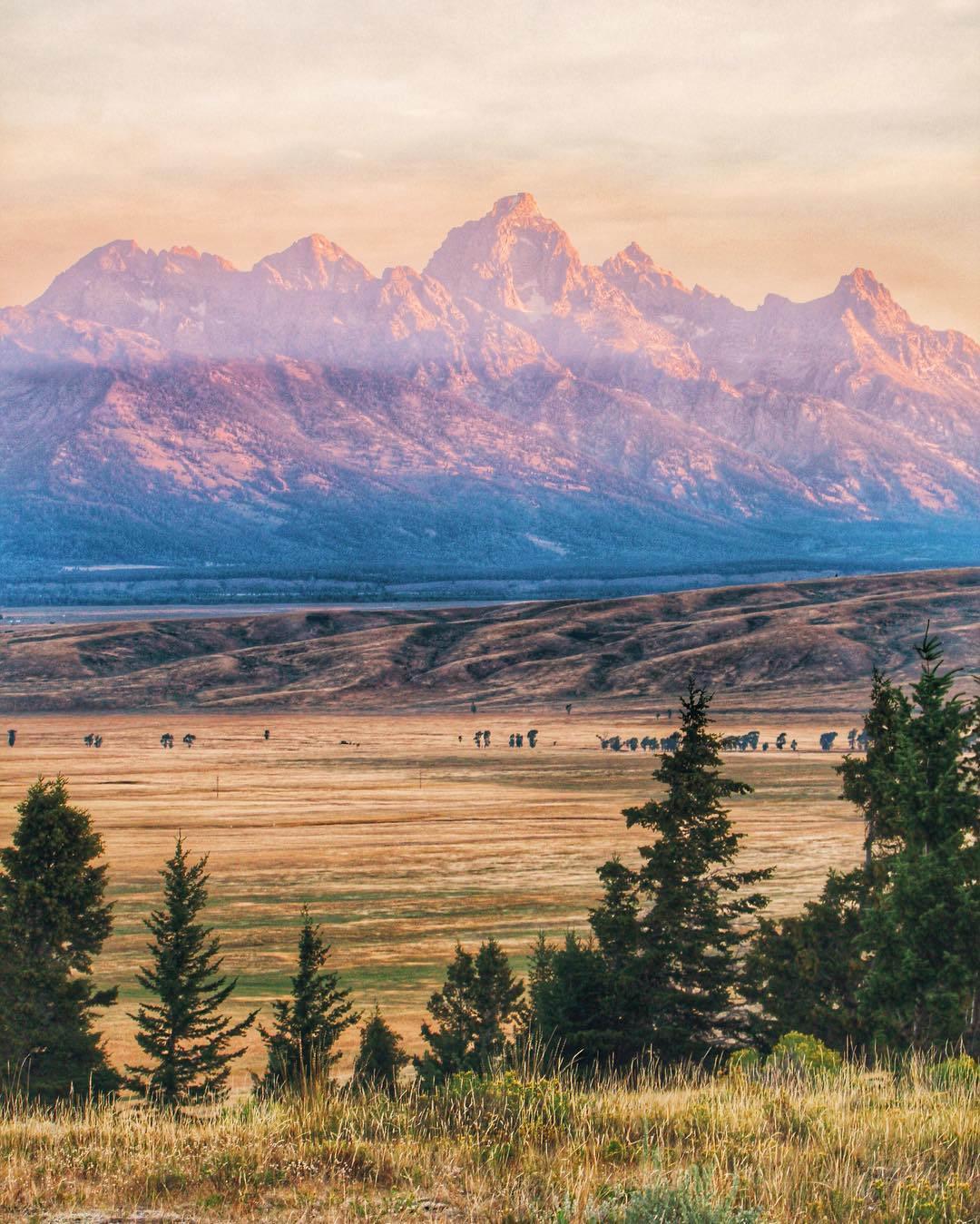 Grand Teton National Park is one of the most scenic places I have had the pleasure of visiting. I took this sunrise photo from across the way at Curtis Canyon, I couldn't feel my fingers but I will never forget that beautiful morning, or that mountain...
