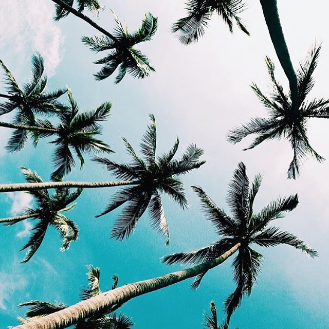 Postal universal de la felicidad | Primavera al fin ☀️ #thermoskin #surfing #boardsports #actionsports #goexplore #beach #beachlife #surfer #sport #lifeisgood