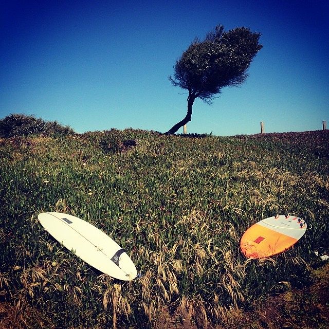 morning OB session with Dan and Brian. pinster on the left, peanutter on the  right #awesome #awesomesurfboards #sleds#teamawesome #oceanbeach #madeincalifornia