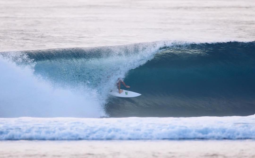 @dsheabutter hiding in Bali