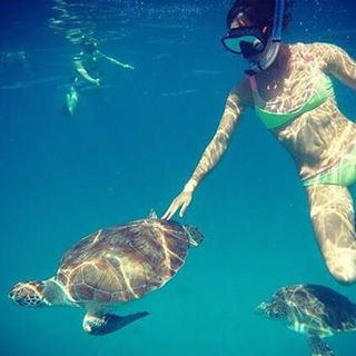 Swimming with turtles!