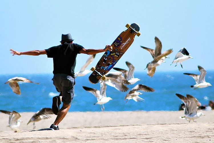 Week is over, go run with seagulls.