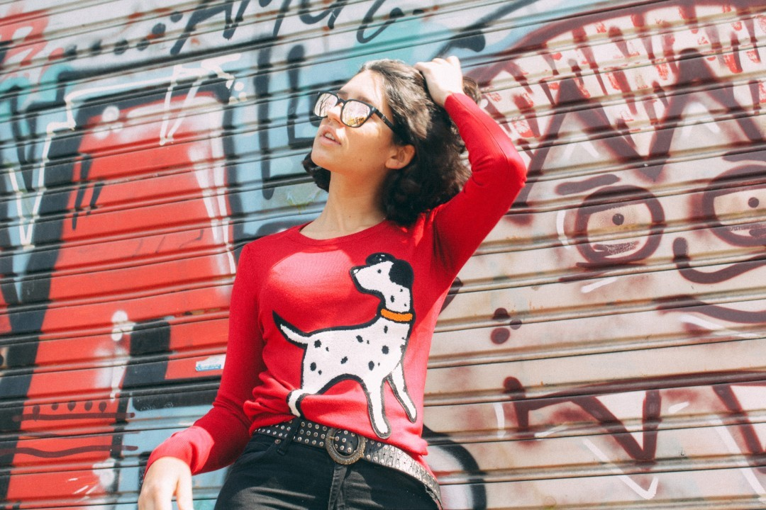 ☀️ Sunny Sunday☀️ Sweater Dog! Feel the spring spirit! Entralo en nuestro shop online: www.chelseamarket.com.ar Envíos gratis a todo el país