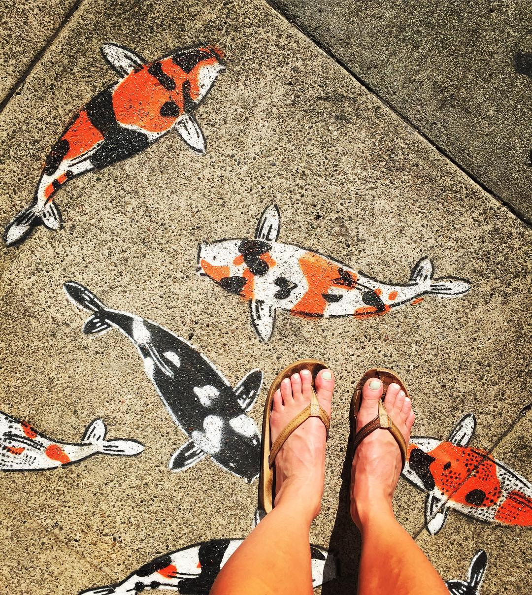 Stepping into good fortune, success, prosperity, longevity, courage, ambition, and perseverance. ⚡️Feeling the Koi Energy ⚡️#koipond #streetart #sanfrancisco