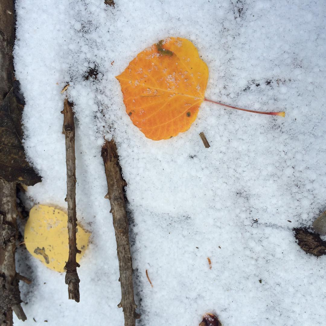 #winterishere