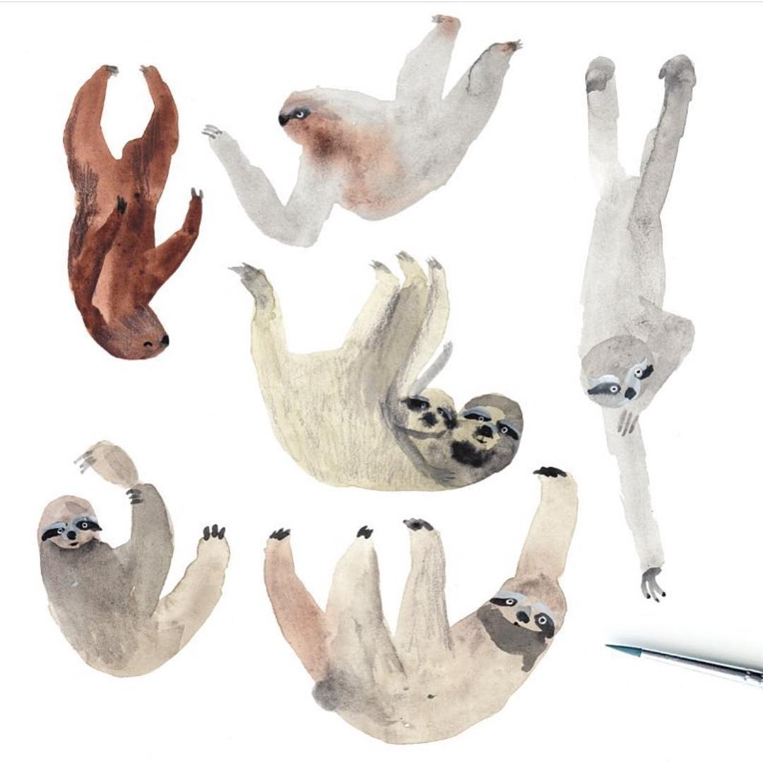 Sloths on sloths on #sloths! #Cuipo #SaveRainforest #Slothlife #SpiritAnimal #SlothAllDay