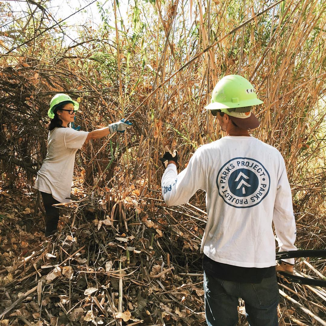 VOLUNTEER DAY We're out of the office today, excited to join the @lacorps removing invasive arundo species from the Tujunga Watershed. Let our native plants live! #LACorpsPower #TransformLA #ServeOurYouth #RadParks