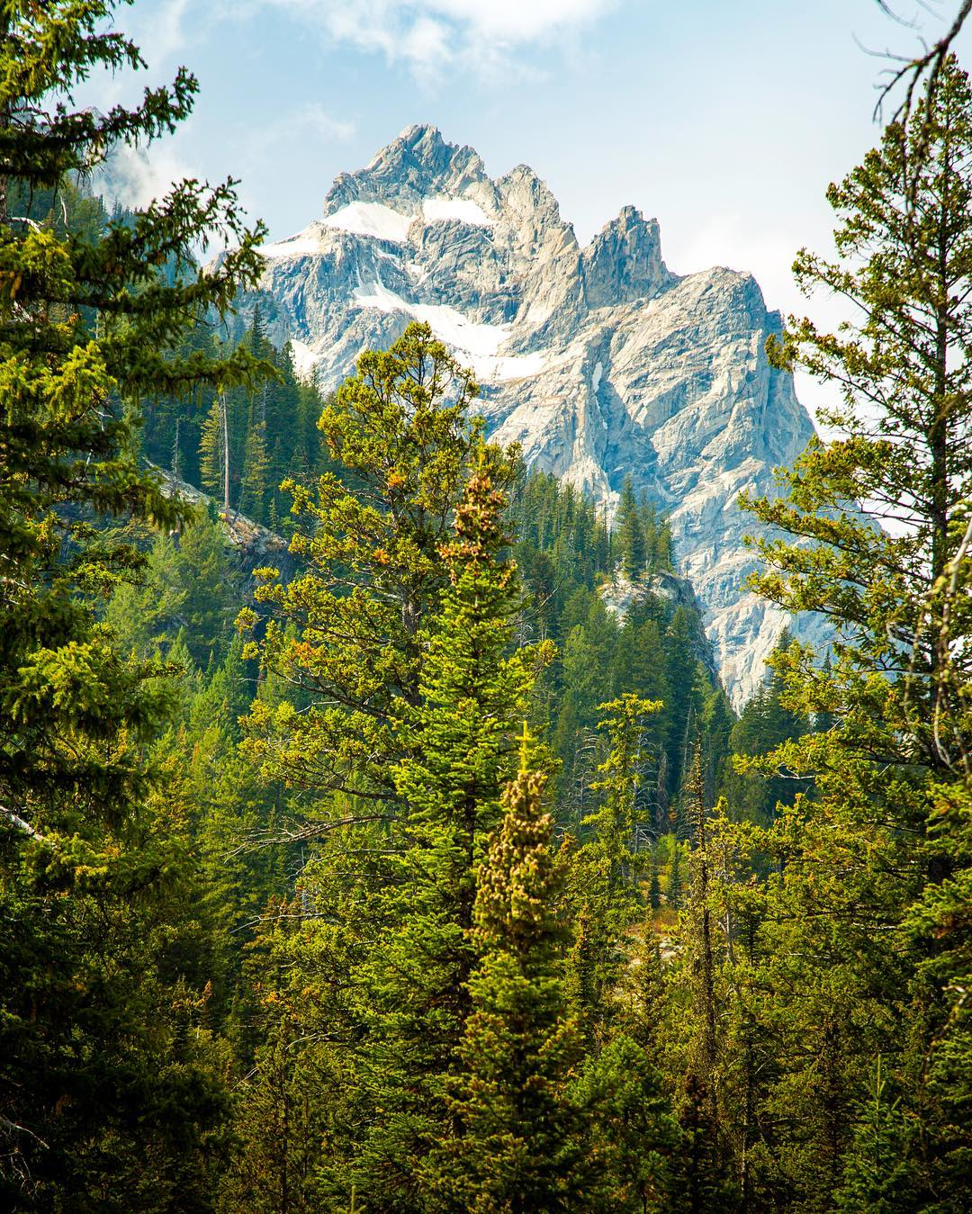 """We spent a few days camping with family and friends in Grand Teton National Park and visiting the usual hot spots of Yellowstone. Amazing campfire dinners and early morning coffee were a delightful treat each day. On the way back home we dreamt of one..."