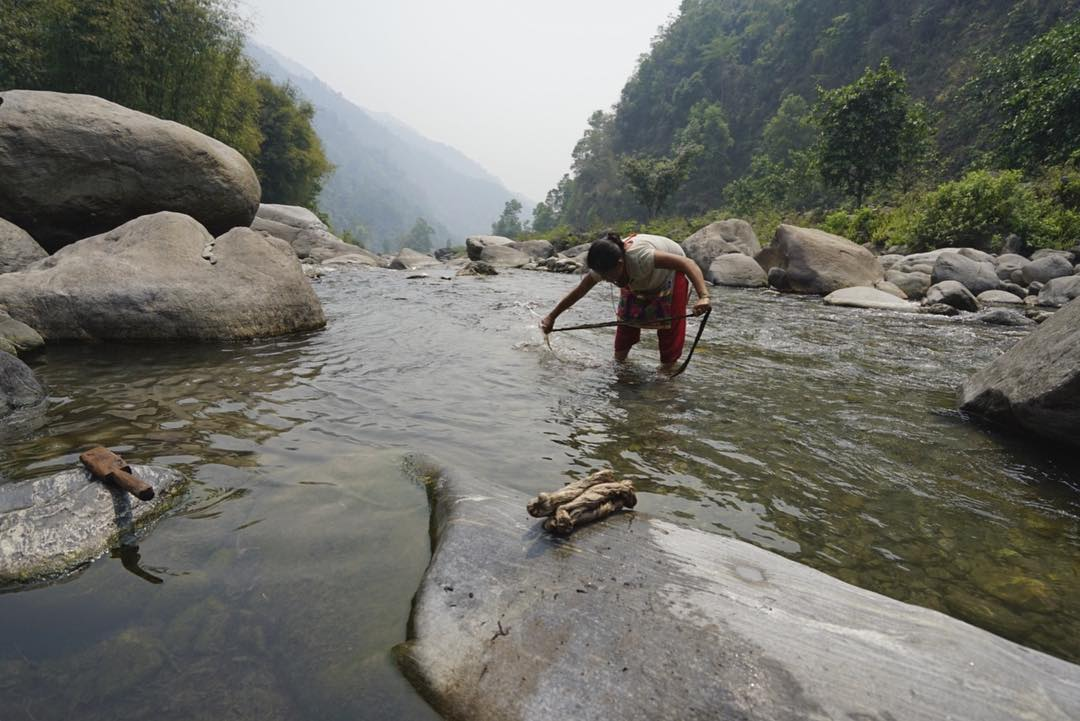 After our Himalayan Nettle is harvested from the jungles in Nepal, the weavers separate the bark and boil it before washing it in the river that runs past our mountain collective. #estwst #connectglobally #liveauthentic