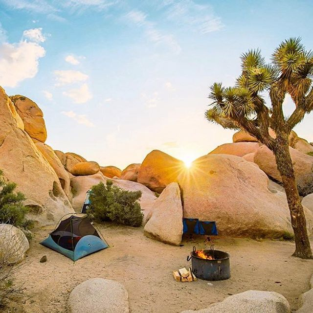 SETTLED IN ⛺️ All ready for a chilly desert night in @joshuatreenps: a tidy campsite with a sunset view & cozy campfire. We're feelin' it. Nice work @alisaprosenaya. @RadParks @FindYourPark @NPS