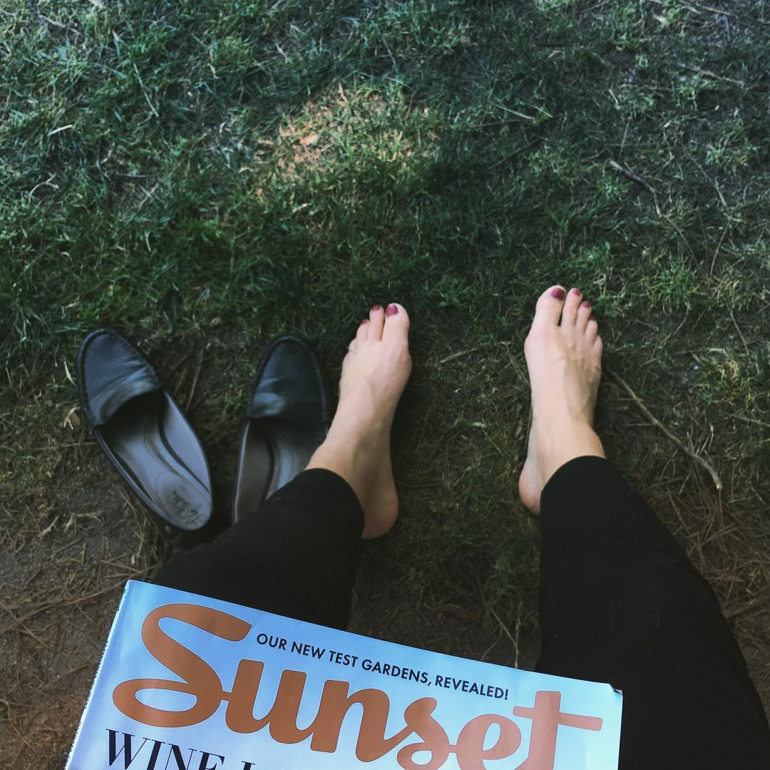 I love my down days and my @sunsetmag  Good morning Marin!  #downday #relaxation #relax #rest #greengrass #grass #sf #holiday #shoesoff #sunset