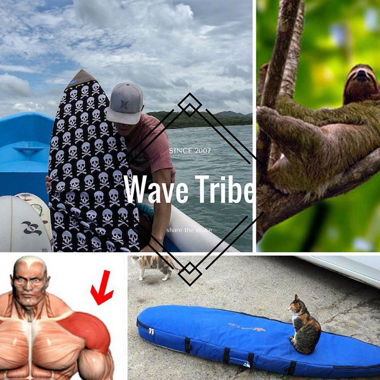 October eNews #wavetribe http://eepurl.com/chOwK1 Costa Rica #surftrip #costarica - Surfboard Sock Special Coupon Code: SOCK111y - #DIY #shaping #minisimmons #tomo - @wavetribe October #deals - #ecosurf Surfers Shoulder & How To Protect @worldsurfers...