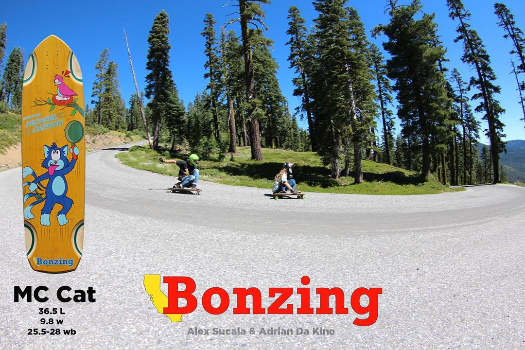September Ad!  #mccat #bonzing #northerncalifornia