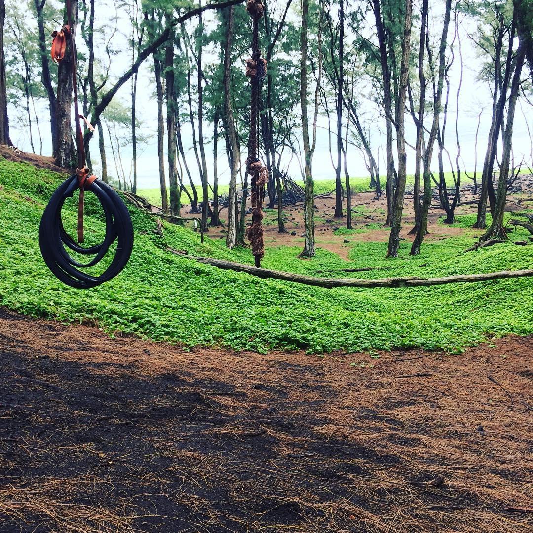 Forest swing. Tackled it. Got stuck. Didn't fall. #winning