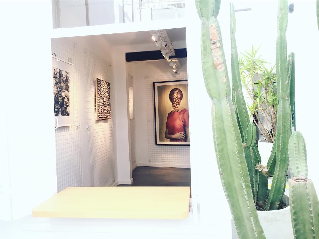 Ya está abierta nuestra galería de Arte con obras de @malumarine @galickas_a @santi_photo @ghirellia @maarpoyo , los esperamos en Honduras 4724 Palermo Soho! ✨✨