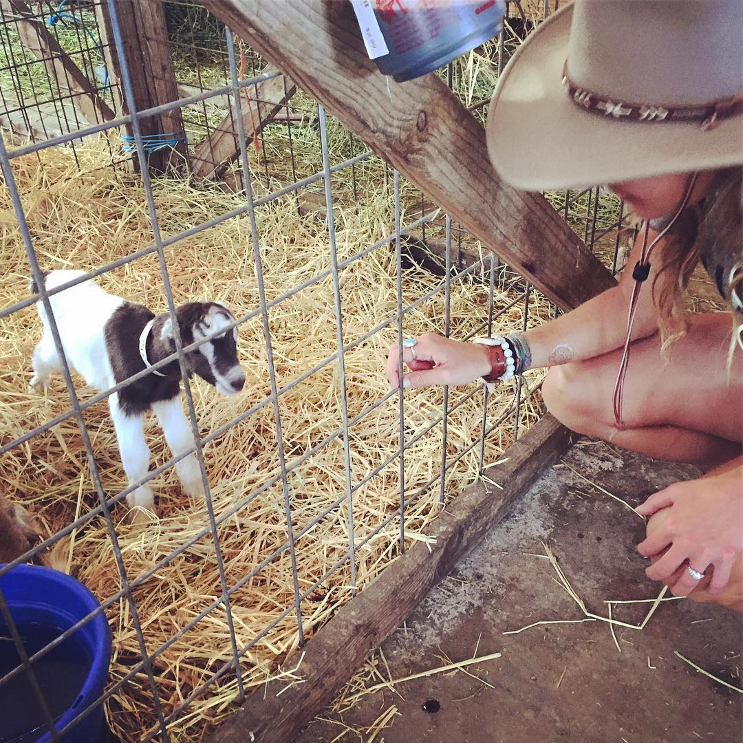 What could make this weekend better? Um - baby goats and cheese @tomalesfarmsteadcreamery that's what