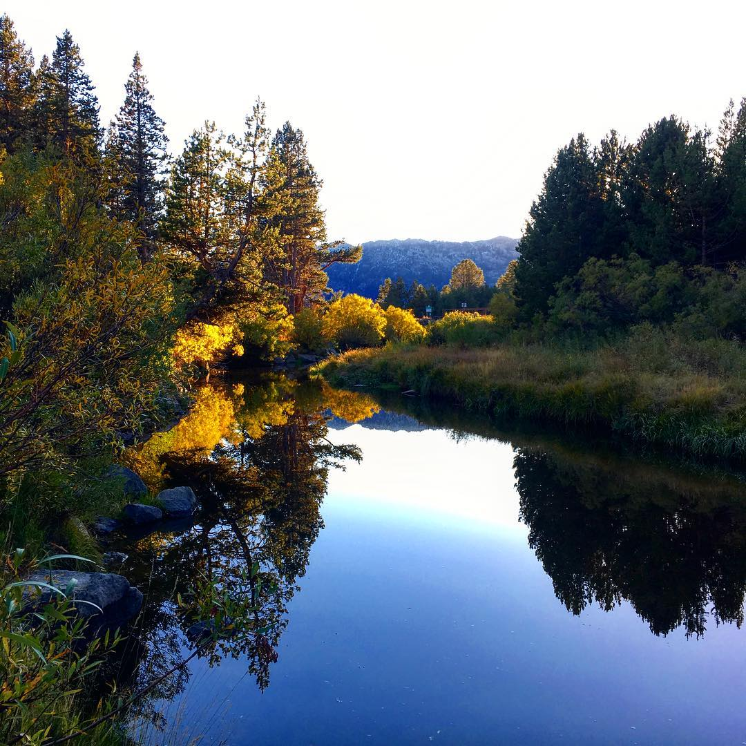 The calmness around Tahoe is real. Really been able to enjoy what we call shoulder season up here in the mountains. Here a shot from the Truckee River. Nice and glassy right before sunset.  #risedesigns #risedesignstahoe #eldoradocounty #aspens...