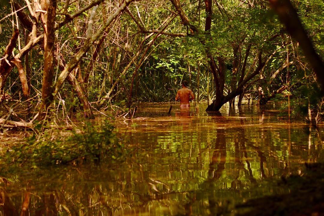 Alerta de cocodrilos y los pibes paseando por el arroyo.  @maetuanis  @goalzero @goodpeoplearg  @econo @bunnysurfoutfit  @jeffersonoutdoorco  #viewfromapurplevan #hitthewave #jungle #mexico #crocs #vanlife #homeiswhereyouparkit #ontheroad #roadtrip