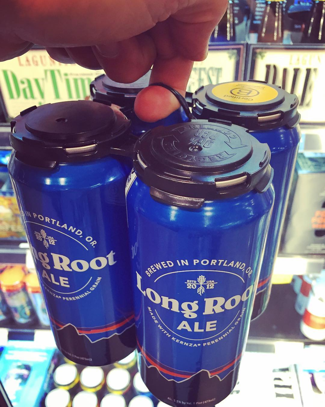 #Perennial favorites are now #blooming in the fridge at @WholeFoods, and this new brew from @patagoniaprovisions has a very tasty #Long tap #Root