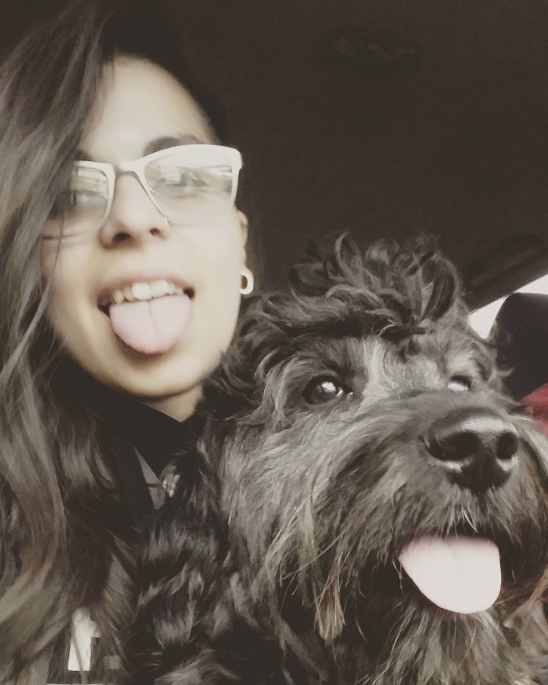 My black beauty ❤ . . . . . . . . . . #negro #pelado #black #puppy #pet #dog #mascota #perrito #cachorro
