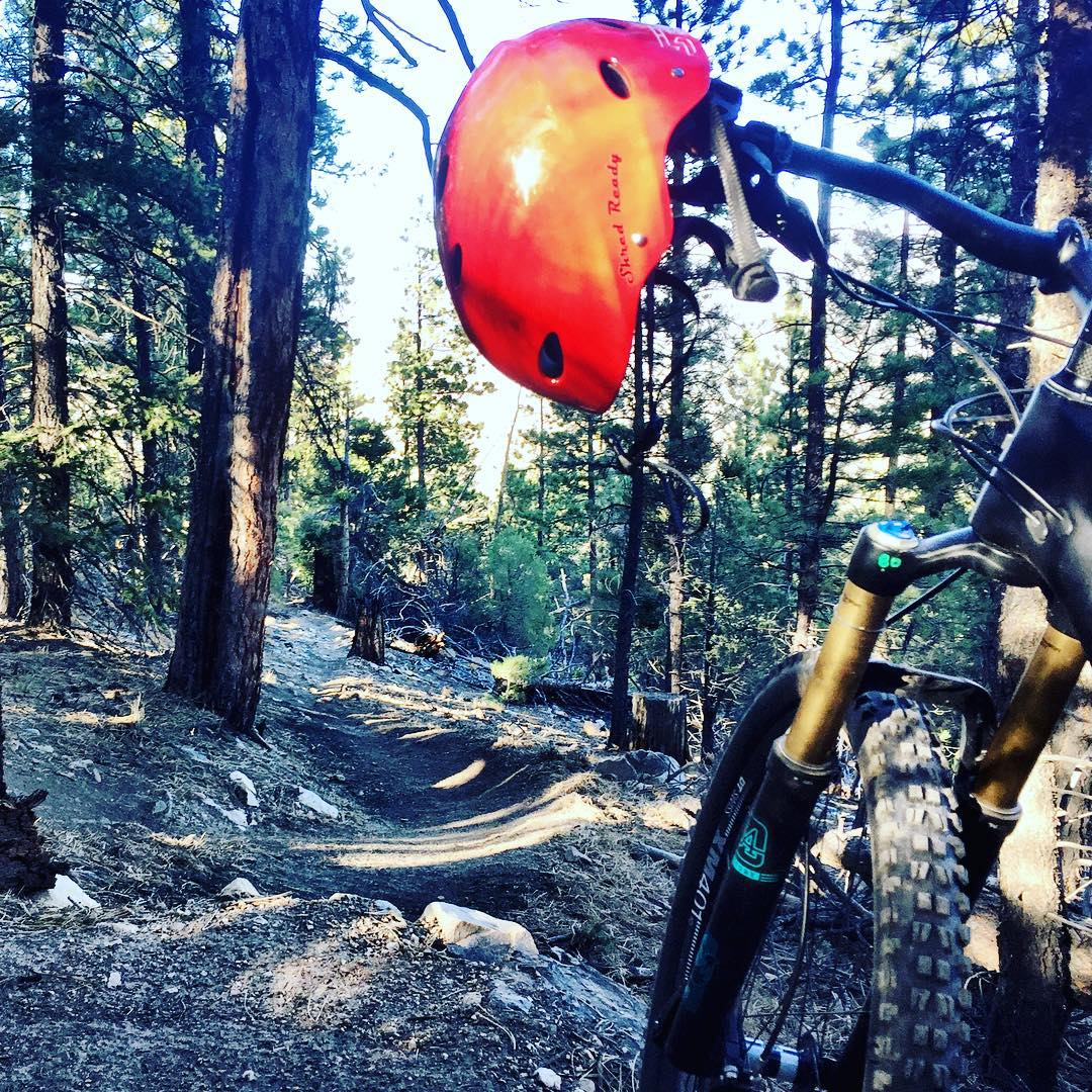 Colorado singletrack at its finest... Who says you can't pedal on a Shred Ready too?#cuzrockshurt #cuztreeshurt #shredreadyhelmets #yeticycles #salidacolorado