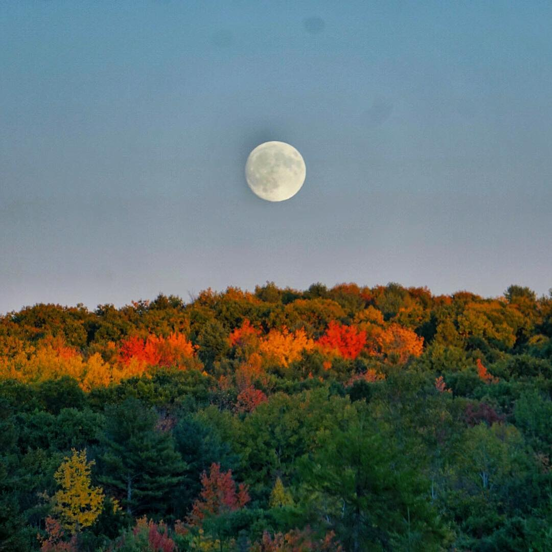 It was fun watching the full moon come up this evening over some beautiful fall colors! #mainepics #fallfoliage #autumn #sonya6000 #fullmoon #maine