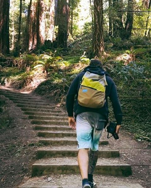 We've got your back // Muir Woods, California. Ph: @pedrobalaphotography