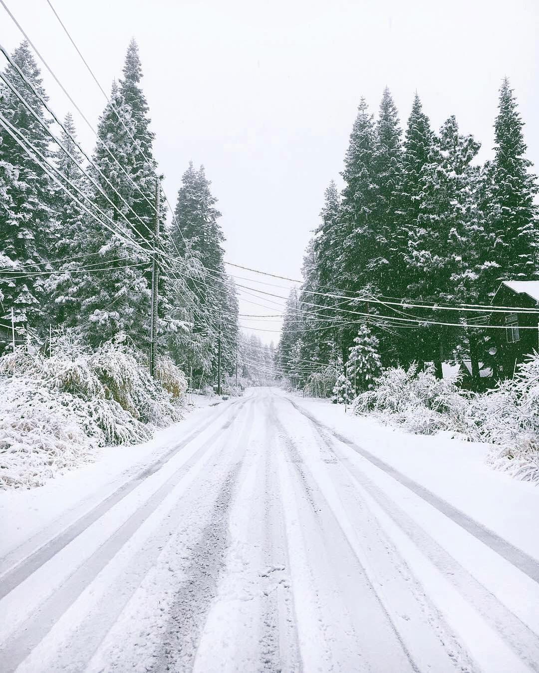 YAY IT'S SNOWING ↟❅ #happymonday #rightnow #winteriscoming PC: @truckeetavern