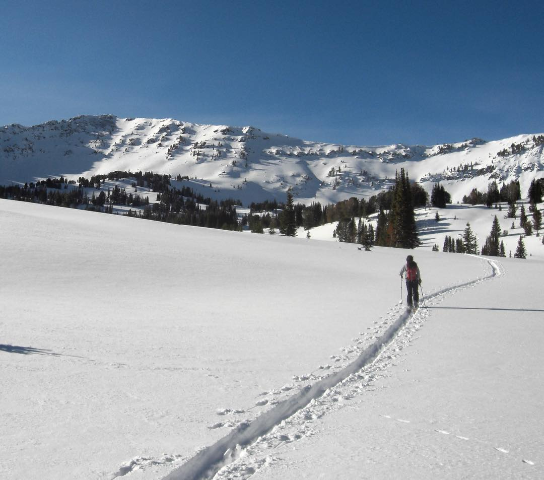 Fresh snow in the mountains has us thinking about #skiing and all of the other winter adventures that lie ahead, including our Gallatin Microplastics Project. In December, 60+ volunteers will ski, snowshoe, hike and even paddle to dozens of sites in...