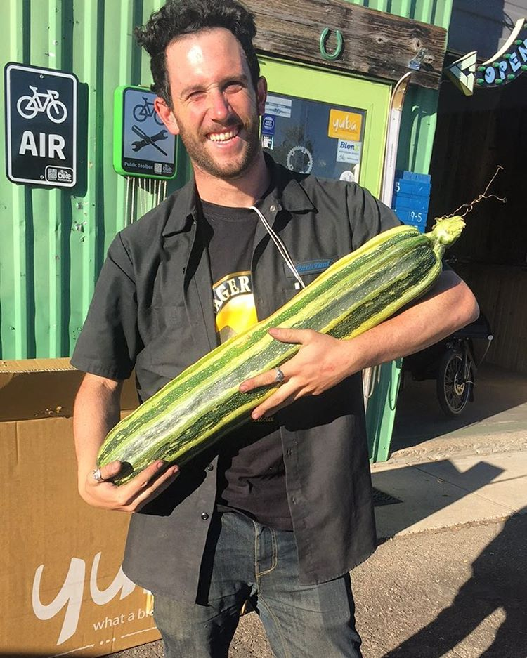 Check out that zucchini! Weighing in at 15.2 pounds! Now what should we do with it? #growbigorgohome #farmtotable #greenguru