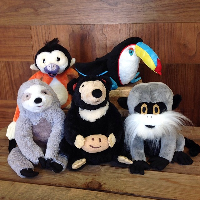 Here's your mid-week pick me up: Your favorite @gottagettagund plush toys are now available in two fun sizes at www.cuipo.org!!#cuipocritters #saverainforest #kidapproved