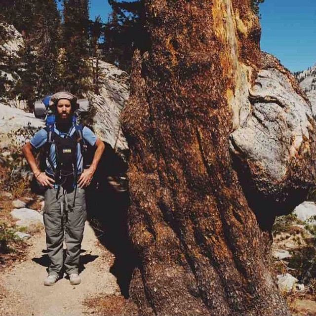 Happy #arborday! We should all be tree huggers today. The #nationalparkweek celebration continues! This shot is from Sequoia National Park on the trail to Emerald Lake. #leaveitbetterthanyoufoundit
