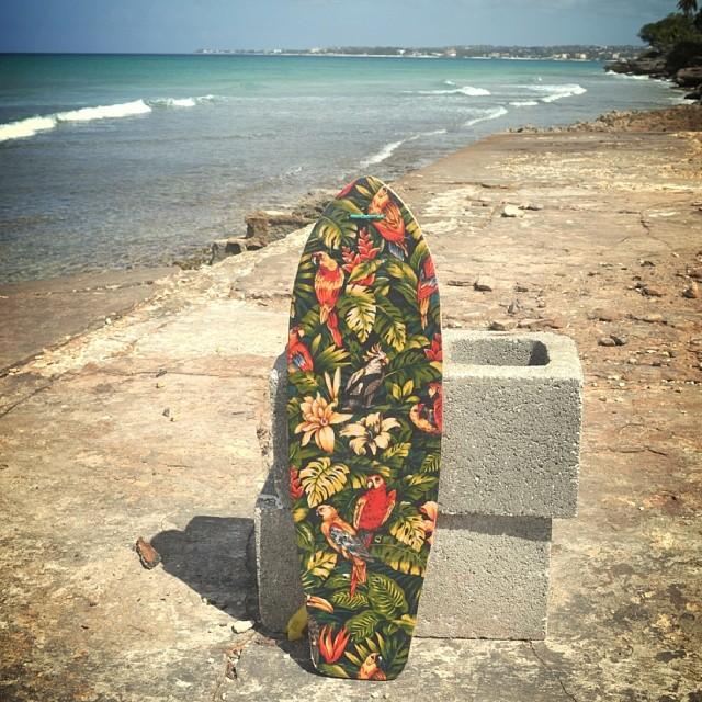Akela Surf Zombie Sk8 Tropical