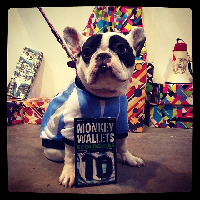 #monkeywallets #fpd2014 #koketitos #tita #bulldog #dogs #fashion #moda @monkeywallets