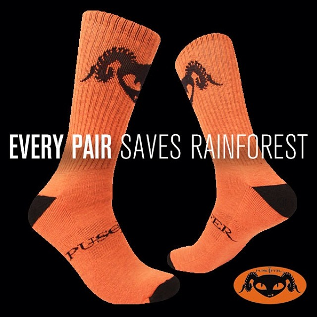 We've teamed up with @puscifer to bring you 300 limited edition #Cuipo X #Puscifer socks!! Don't waste any time and get your pair before they're gone at www.cuipo.com/puscifer. Support the music and #saverainforest! #cuipoartistsocks #cuipopuscifersocks