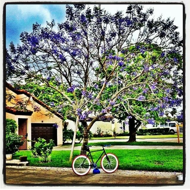 Photo cred: @joelarias #beauty #amazing #scenery #boombotix